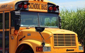 school-bus-4406479_1280 (1)